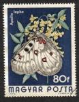 Stamps Hungary -  Mariposas