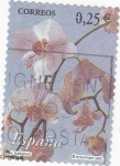 Stamps Spain -  Flora-naranjo  (19)