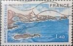Sellos de Europa - Francia -  Intercambio 0,30 usd 1,40 francos 1976