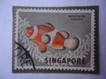 Stamps Singapore -  Amphiprion Percula.