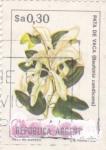 Sellos de America - Argentina -  flores- pata de vaca