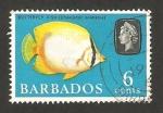 Sellos de America - Barbados -   248 - Elizabeth II, pez mariposa