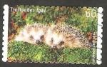 Stamps Germany -  Fauna animal, erizos