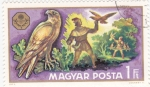Stamps Hungary -  cetrería
