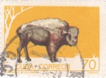 Stamps Cuba -  bisonte