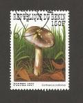 Sellos de Africa - Benin -  Cortinarius collinitus