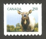 Stamps Canada -  Animal