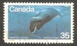 Sellos del Mundo : America : Canadá :   Ballena mysticetus