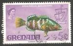 Sellos de America - Granada -  285 - Elizabeth II, fauna epinephellus adscenionis