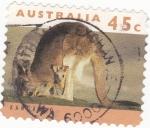 Stamps Australia -  canguro