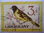Stamps Uruguay -  Cabecita Negra. (yvert 240)