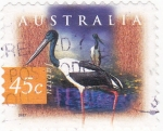 Sellos de Oceania - Australia -  ave- javiru