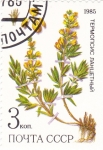 Stamps Russia -  flora-