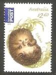 Stamps Australia -  3778 - Echidna, oso hormiguero espinoso