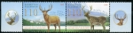 Stamps Asia - Kazakhstan -  varios