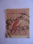 Sellos de Oceania - Australia -  Kooka Burra (S/95)