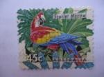 Sellos de Oceania - Australia -  Scarlet Macaw - Guacamayo -(S/1390)