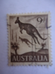 Sellos de Oceania - Australia -  Canguro (Yv/254)