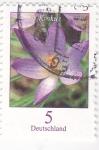 Sellos de Europa - Alemania -  flora- Krokus