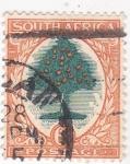 Sellos de Africa - Sudáfrica -  arbol frutal