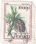 Stamps Poland -  piña