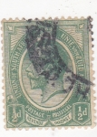 Stamps South Africa -   rey George V