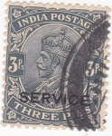 Sellos de Asia - India -  rey George V (SERVICE)