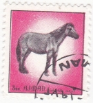 Stamps United Arab Emirates -  caballo- AJMAN