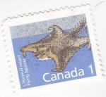 Stamps Canada -  rata voladora