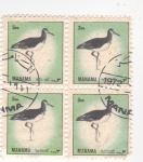Sellos de Asia - Bahrein -  aves-