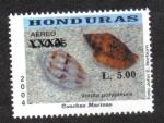 Sellos de America - Honduras -  Conchas Marinas