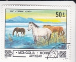 Stamps Mongolia -  caballos salvajes