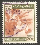 Sellos de Asia - Arabia Saudita -  369 - Jinete