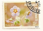 Stamps Africa - Djibouti -  flor