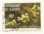 Sellos del Mundo : Africa : Djibouti : Flor. Acacia Etbaica