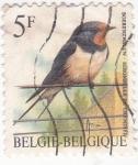 Sellos de Europa - Bélgica -  ave-