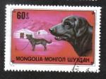 Stamps Mongolia -  Mongol hausdog