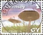 Stamps : Europe : United_Kingdom :  Intercambio 1,25 usd 32 p. 2007