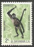 Stamps El Salvador -  687 - Mono araña