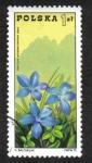 Stamps Poland -  Gentiana verna - Montes Tatras