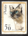 Stamps Poland -  Gatos