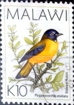 Stamps : Africa : Malawi :  Intercambio 5,00 usd 10 k. 1994