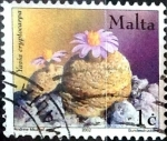 Stamps : Europe : Malta :  Intercambio 0,80 usd 1 cent. 2002