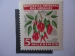 Sellos de America - Uruguay -  Ceibo-Flor Nacional de la Republica Oriental del Uruguay.