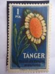 Stamps : Africa : Morocco :  Ciudad d Tánger-Marruecos - Telégrafo Español - Huerfanos.