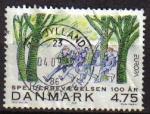 Stamps Denmark -  DINAMARCA 2007 Sello Serie Europa Scouts Europeos Usado