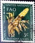 Stamps : America : ONU :  Intercambio cxrf 0,20 usd 3 cent. 1954