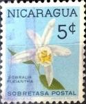 Sellos del Mundo : America : Nicaragua : Intercambio 0,20 usd 5 cent. 1962