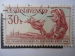 Sellos de Europa - Checoslovaquia -  3er Congresode la Cruz Roja Checoslovaco - Mujer -