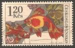 Stamps Czechoslovakia -   2107 - Pez de acuario, Carassius auratus